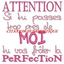 TRANSFERT CITATION HUMORISTIQUE 17 cm x 13cm COUPON COTON 28 X 21 CM